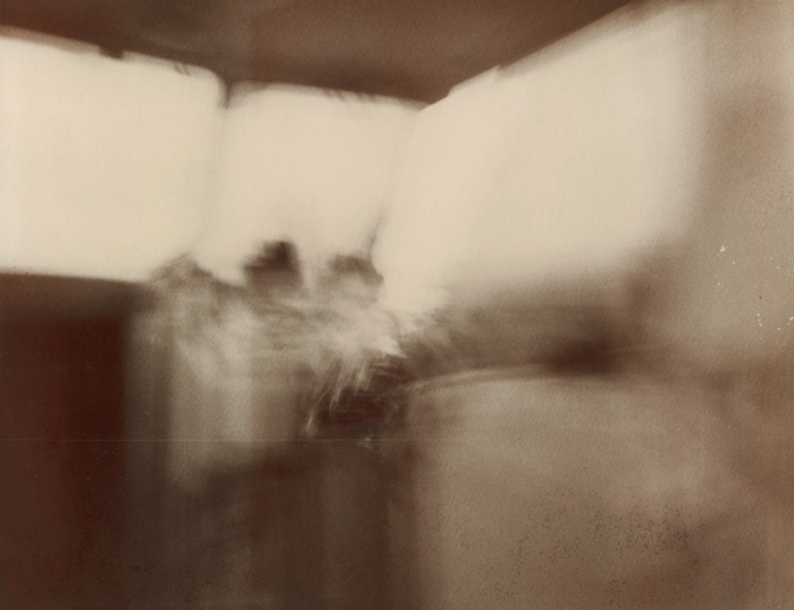 Susan Mikula: Pinhole and Polaroid Photography