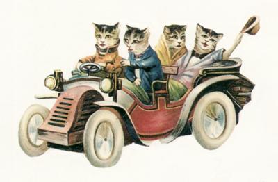 Catty Artist Opportunities