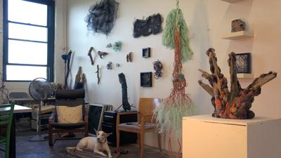 Studio Views: Jodi Colella - Massachusetts Cultural Council