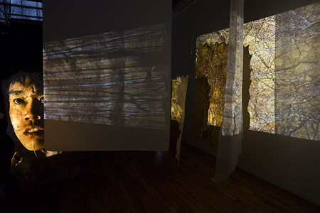 Still from BLINDSIGHT, immersive sculptural video installation by Sarah Bliss and Rosalyn Driscoll