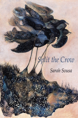 Cover art from SPLIT THE CROW by Sarah Sousa (Parlor Press 2015)