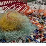Basia Goszczynska: Reclaimed Wilds