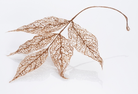 Jenine Shereos, LEAF (2013), human hair, 5x3 in, photo by Robert Diamante