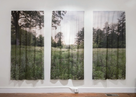 Jodie Mim Goodnough, NORTHAMPTON STATE HOSPITAL (2015) from the PROSPECT project, Three Inkjet Prints on Cotton Lawn, 36x78 in