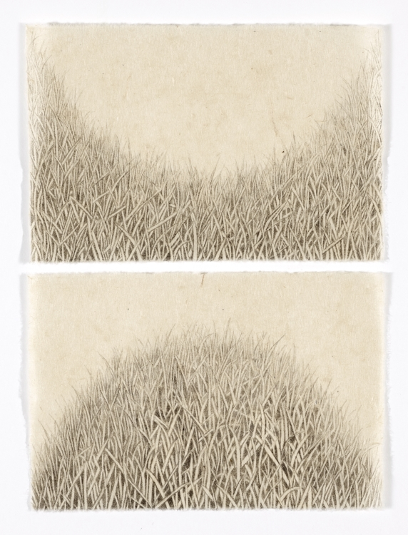 Meg Alexander, HILL/HOLE (VALLEY & HILL DIPTYCH) (2017), India ink on Nepal paper, 10.5x7.75 in